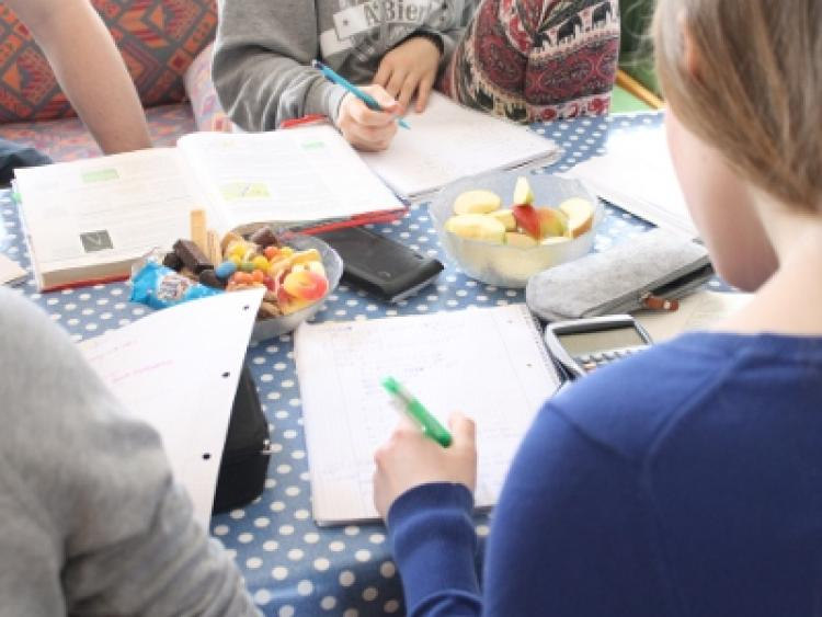 Flyer Mathe Abi Fit-Kurs
